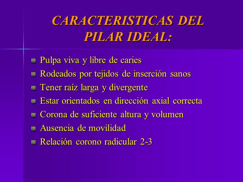 CARACTERISTICAS DEL PILAR IDEAL: