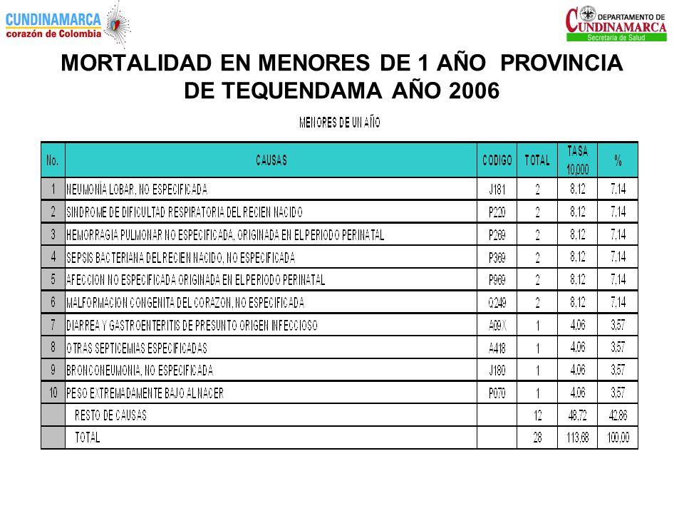 MORTALIDAD EN MENORES DE 1 AÑO PROVINCIA DE TEQUENDAMA AÑO 2006
