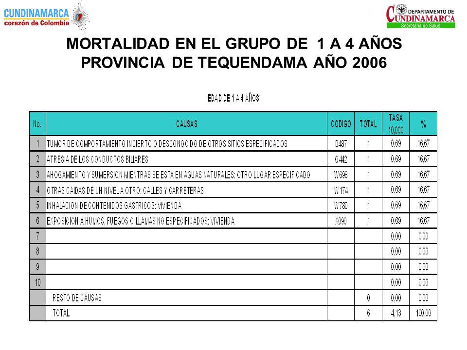 MORTALIDAD EN EL GRUPO DE 1 A 4 AÑOS PROVINCIA DE TEQUENDAMA AÑO 2006