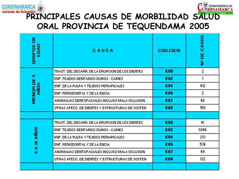 PRINCIPALES CAUSAS DE MORBILIDAD SALUD ORAL PROVINCIA DE TEQUENDAMA 2005