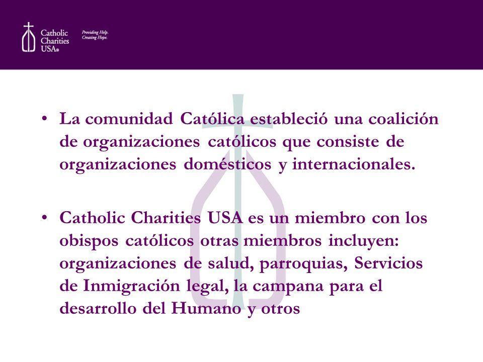 La comunidad Católica estableció una coalición de organizaciones católicos que consiste de organizaciones domésticos y internacionales.