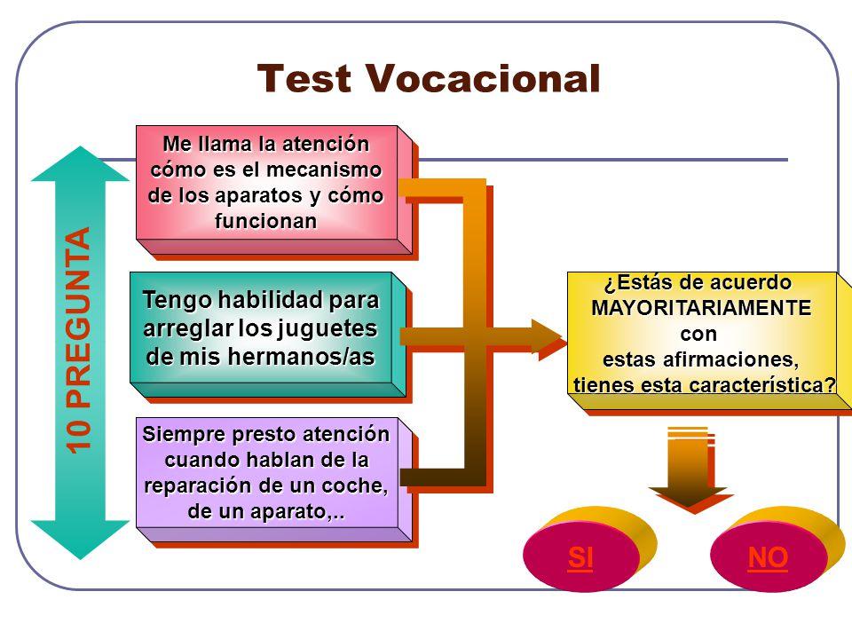 Test Vocacional 10 PREGUNTA SI NO