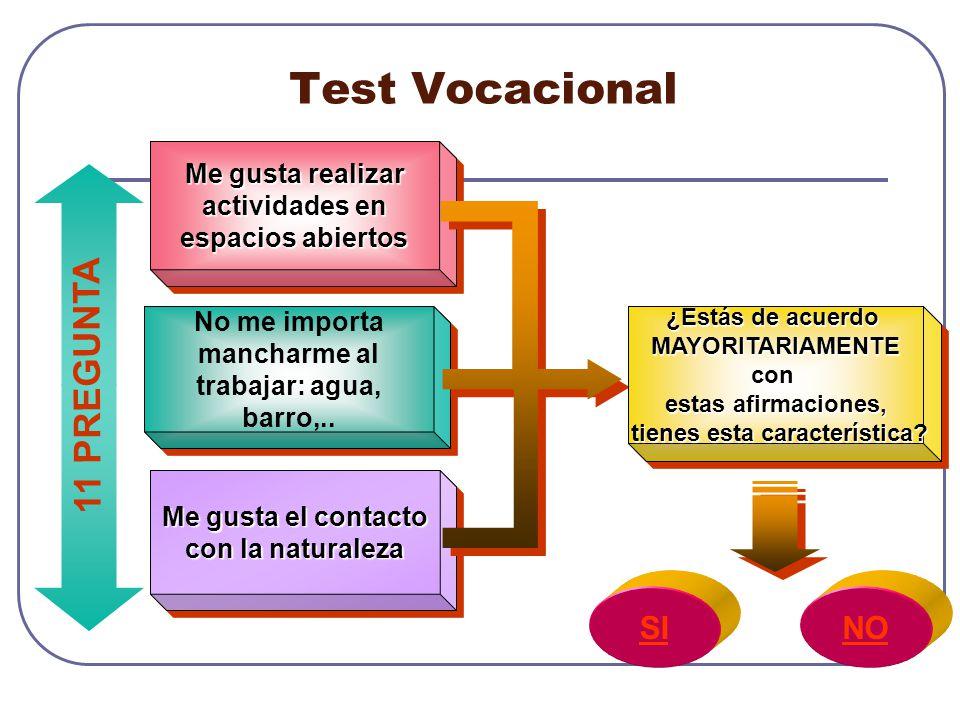 Test Vocacional 11 PREGUNTA SI NO