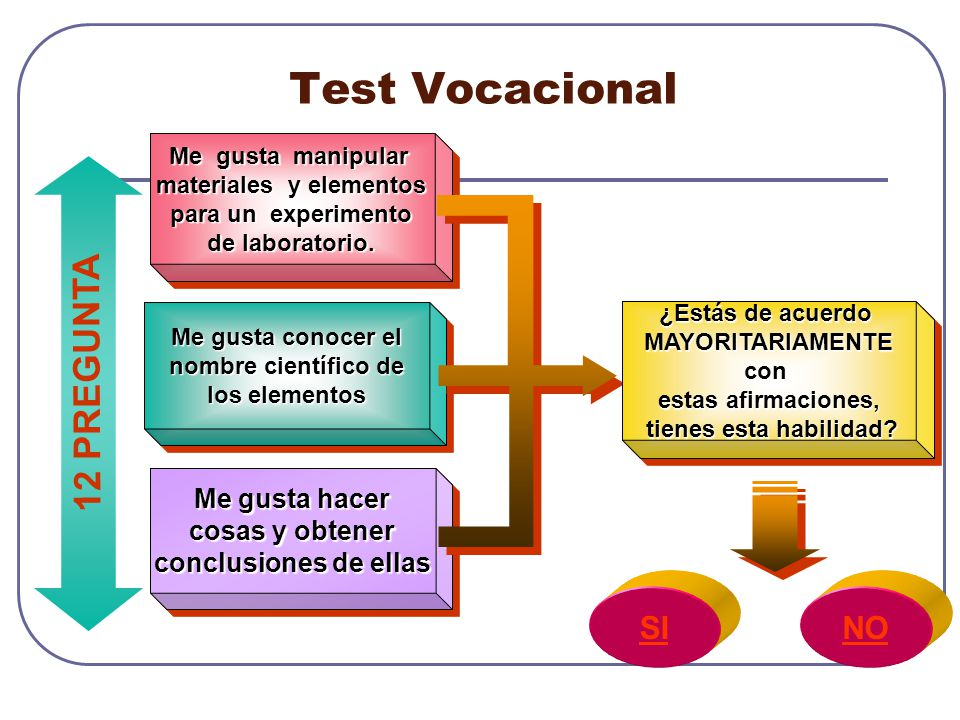 Test Vocacional 12 PREGUNTA SI NO