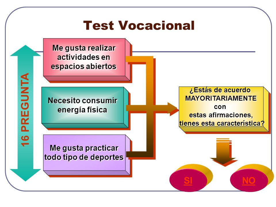Test Vocacional 16 PREGUNTA SI NO