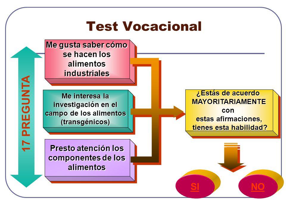 Test Vocacional 17 PREGUNTA SI NO