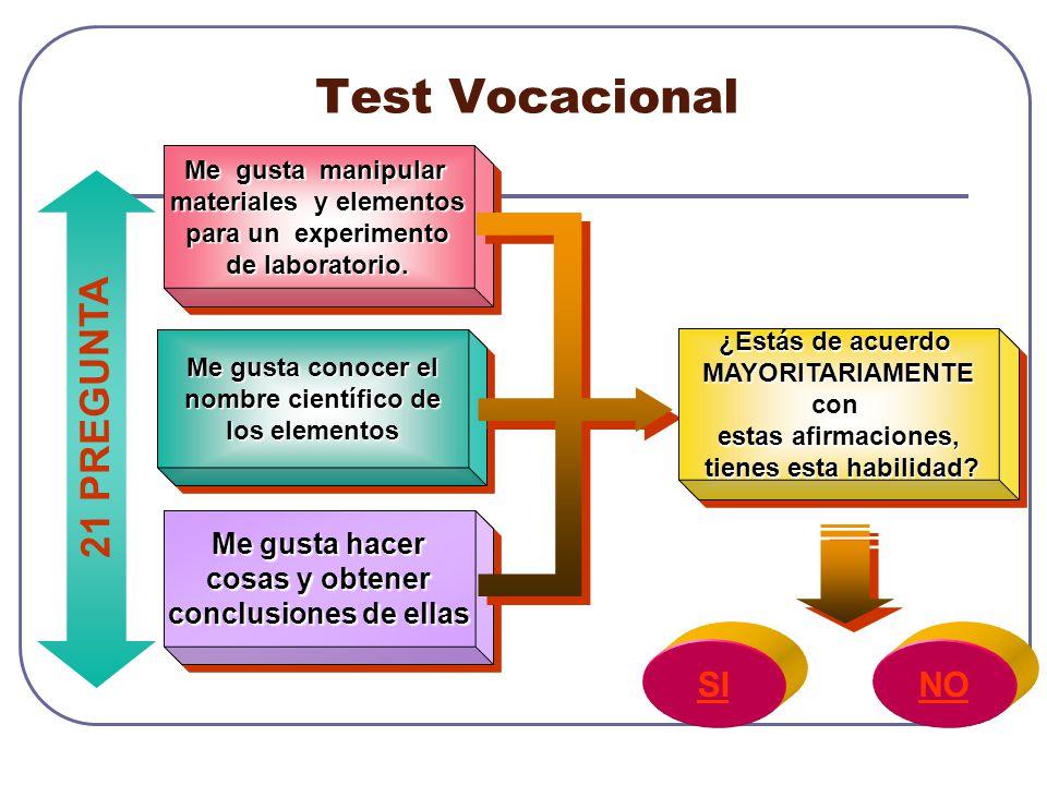 Test Vocacional 21 PREGUNTA SI NO