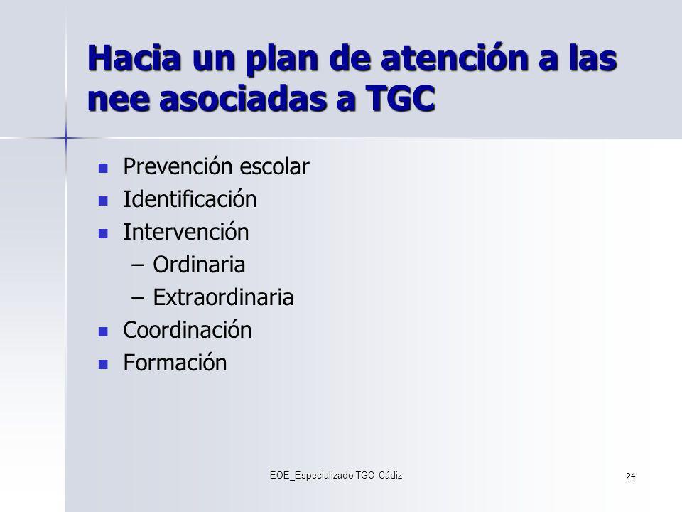 Hacia un plan de atención a las nee asociadas a TGC