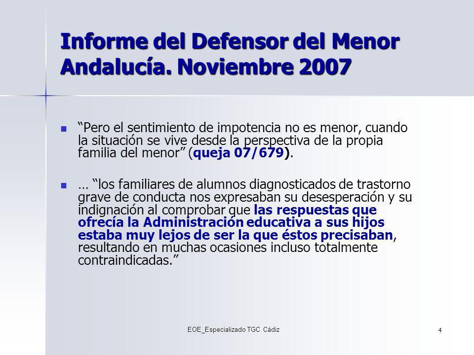 Informe del Defensor del Menor Andalucía. Noviembre 2007