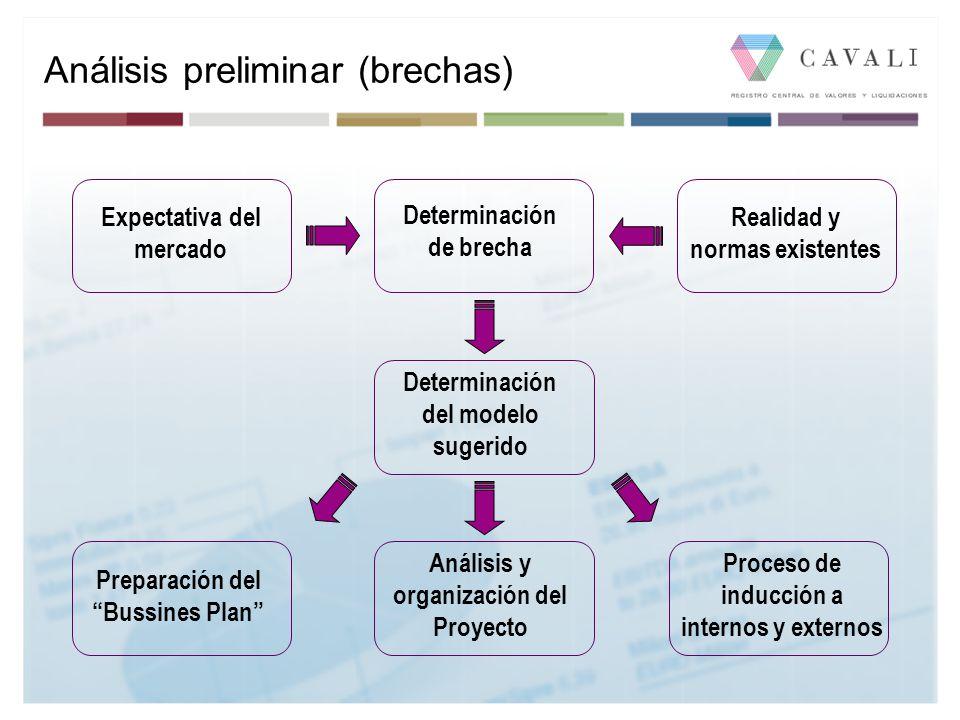 Análisis preliminar (brechas)