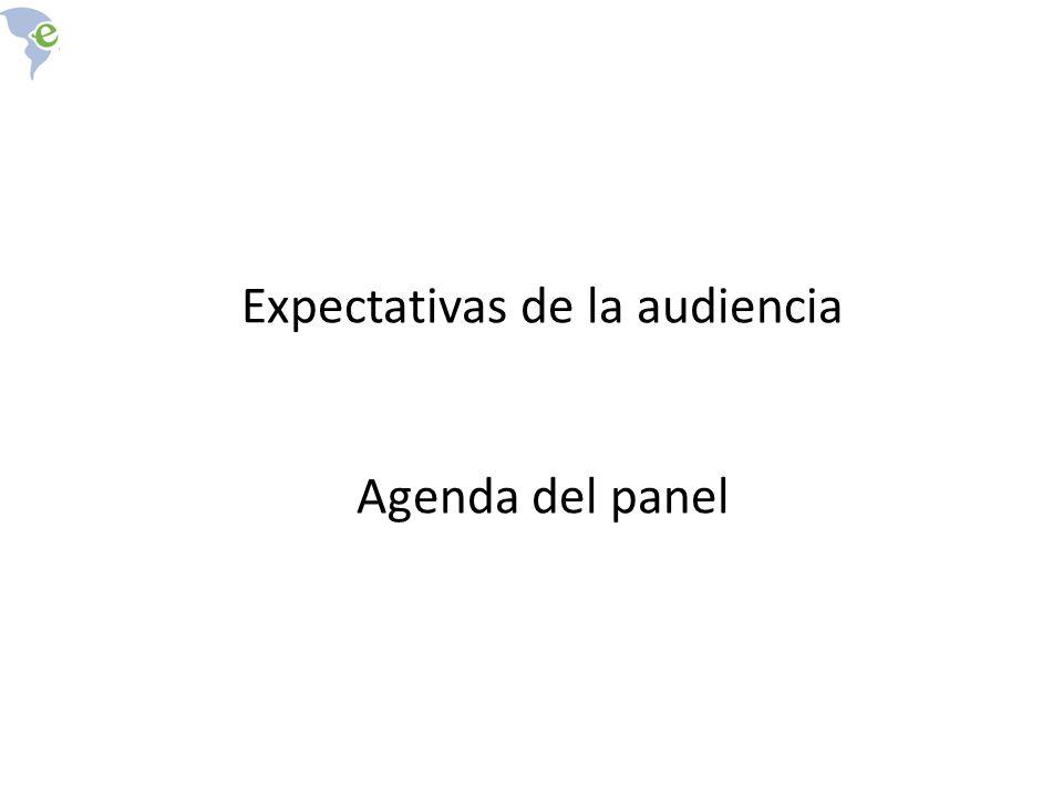 Expectativas de la audiencia Agenda del panel