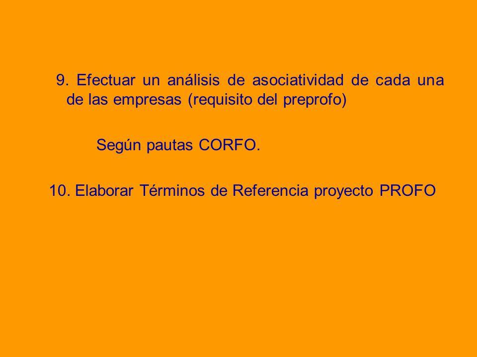 10. Elaborar Términos de Referencia proyecto PROFO