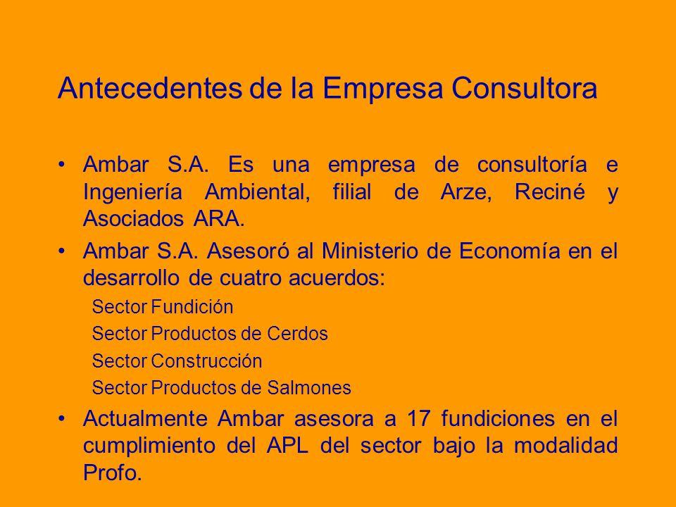 Antecedentes de la Empresa Consultora