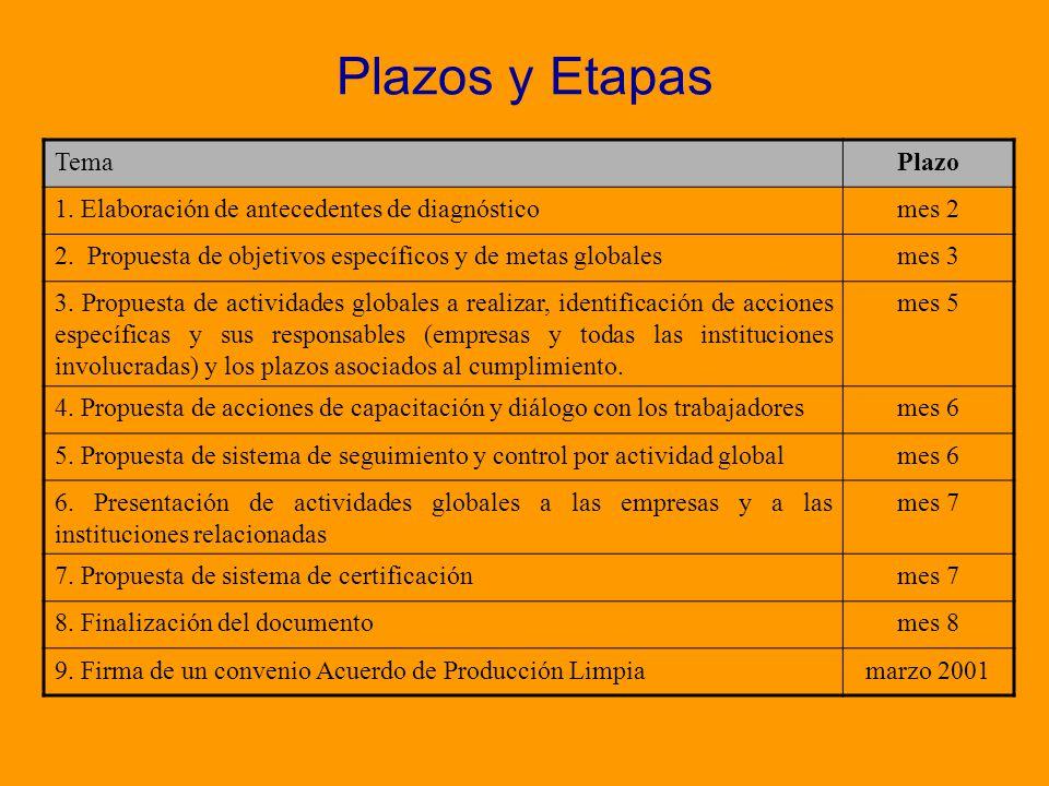 Plazos y Etapas Tema Plazo