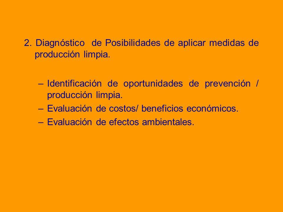 2. Diagnóstico de Posibilidades de aplicar medidas de producción limpia.