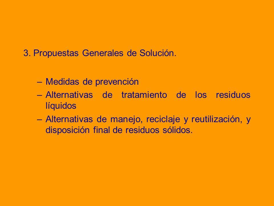 3. Propuestas Generales de Solución.