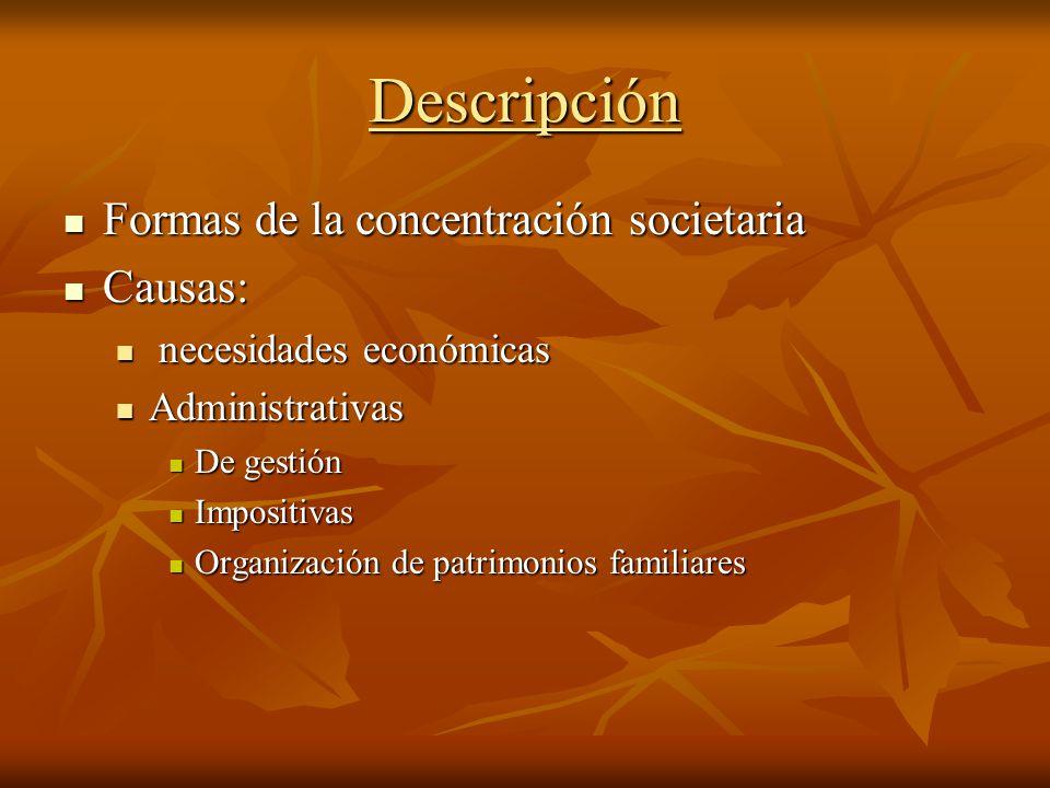 Descripción Formas de la concentración societaria Causas: