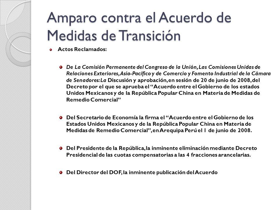 Amparo contra el Acuerdo de Medidas de Transición