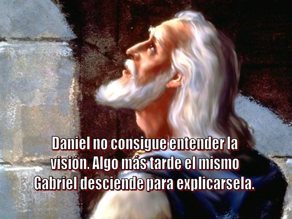 Daniel no consigue entender la visión. Algo más tarde el mismo