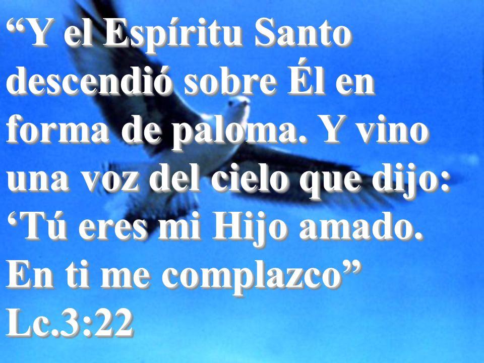 Y el Espíritu Santo descendió sobre Él en forma de paloma