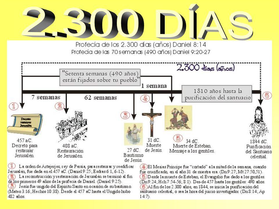 2.300 DÍAS