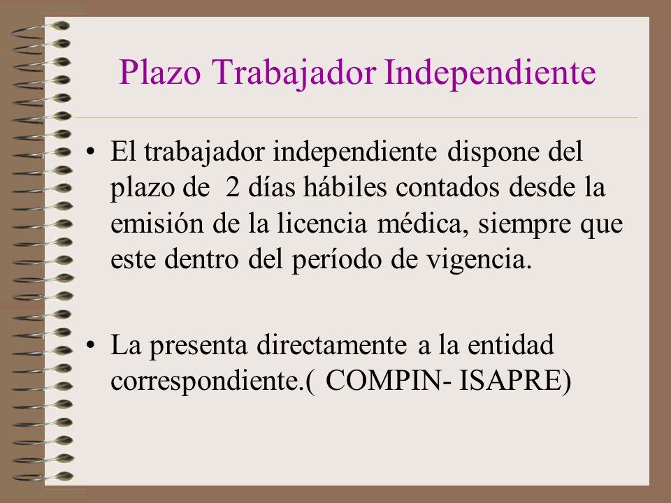 Plazo Trabajador Independiente