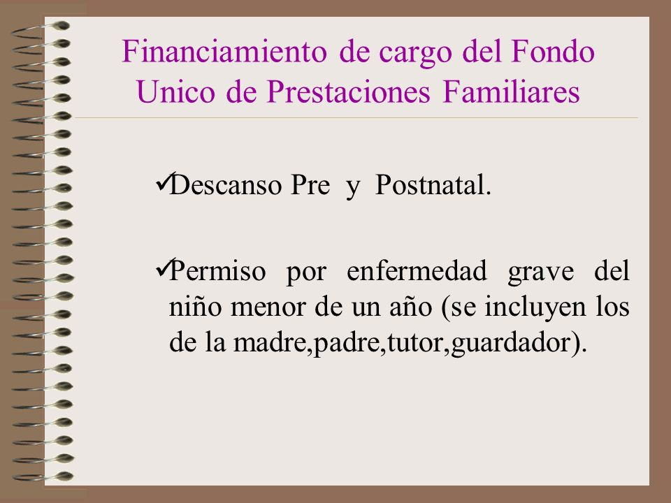 Financiamiento de cargo del Fondo Unico de Prestaciones Familiares