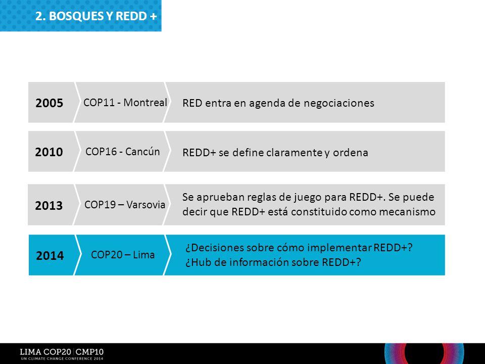 2. Bosques y redd + 2005. COP11 - Montreal. RED entra en agenda de negociaciones. 2010. COP16 - Cancún.
