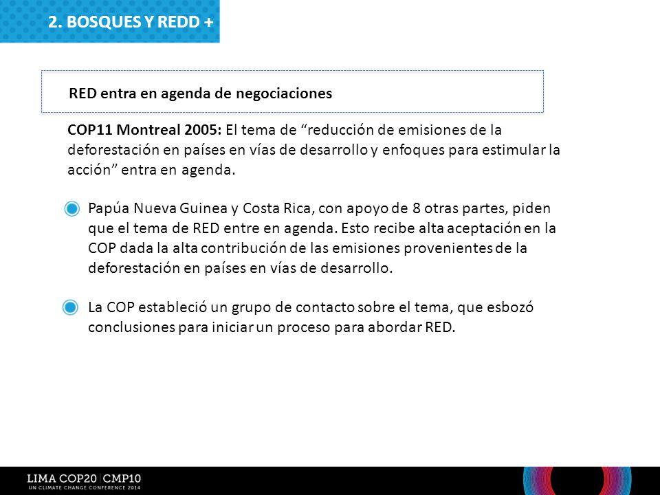 2. Bosques y redd + RED entra en agenda de negociaciones
