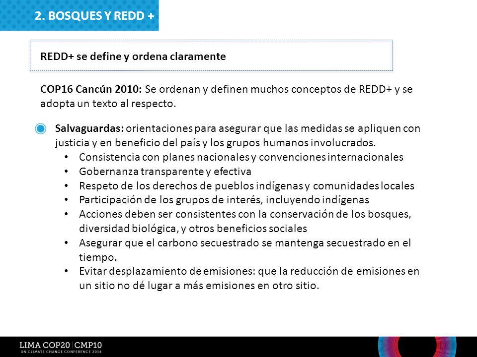 2. Bosques y redd + REDD+ se define y ordena claramente