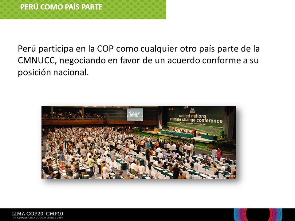 PERÚ COMO PAÍS PARTE 5. ¿Cuál es el rol de Lima Perú como país parte.