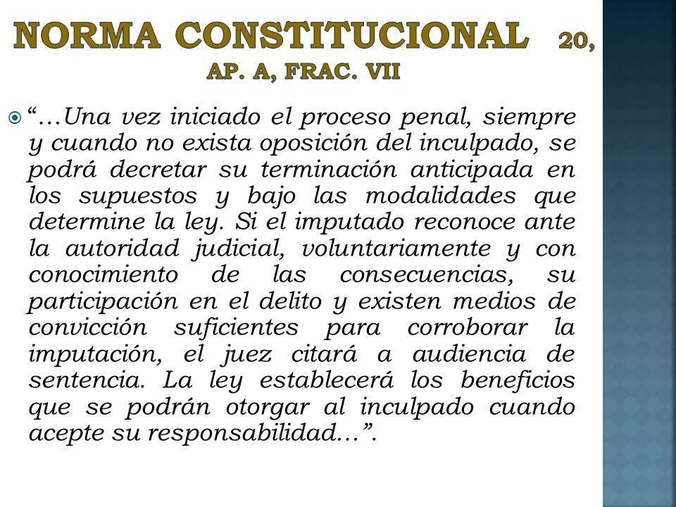 NORMA CONSTITUCIONAL 20, Ap. A, Frac. VII