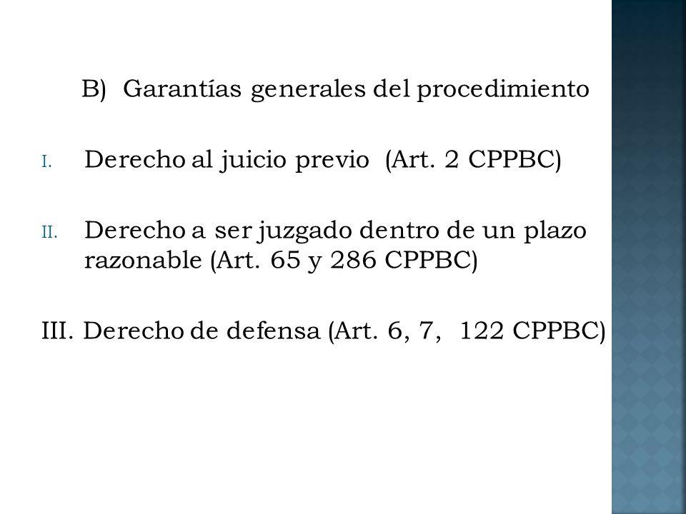 B) Garantías generales del procedimiento