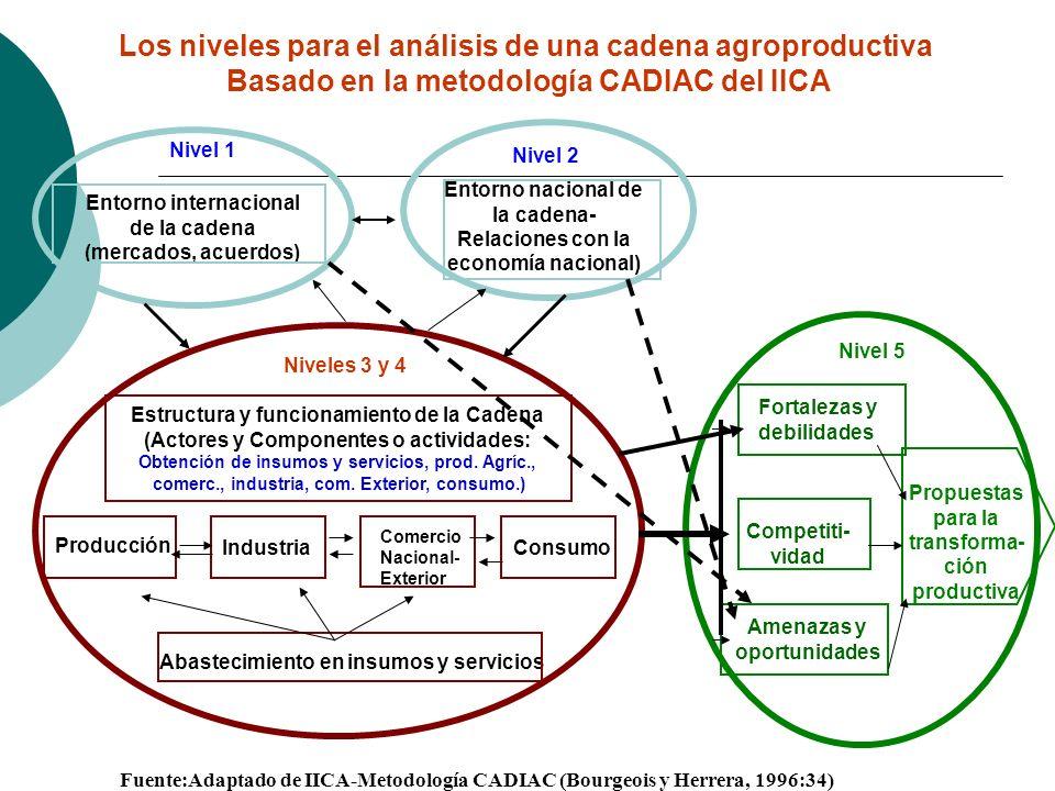 Los niveles para el análisis de una cadena agroproductiva