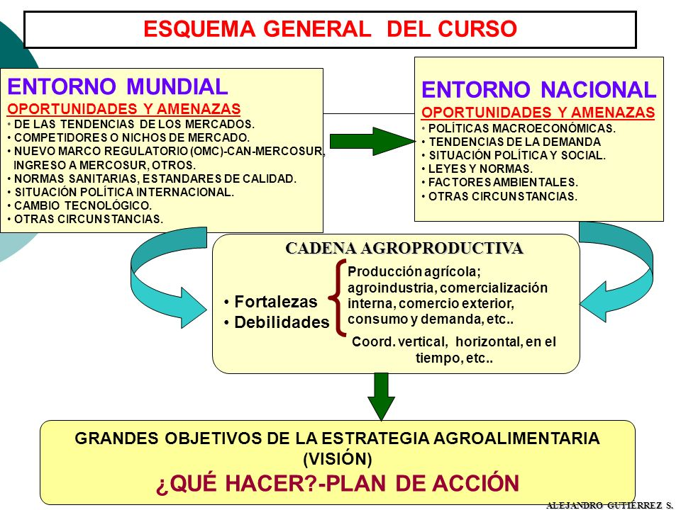 ESQUEMA GENERAL DEL CURSO ¿QUÉ HACER -PLAN DE ACCIÓN