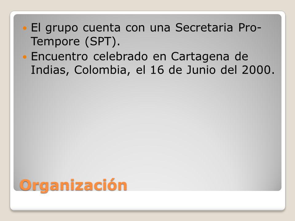 Organización El grupo cuenta con una Secretaria Pro- Tempore (SPT).