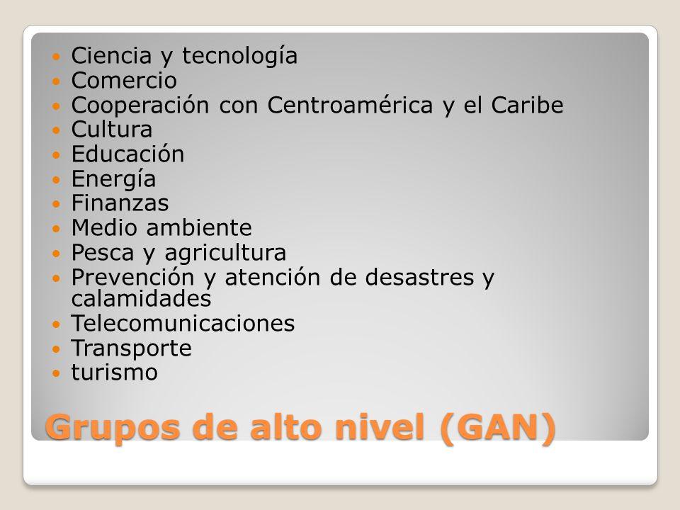 Grupos de alto nivel (GAN)