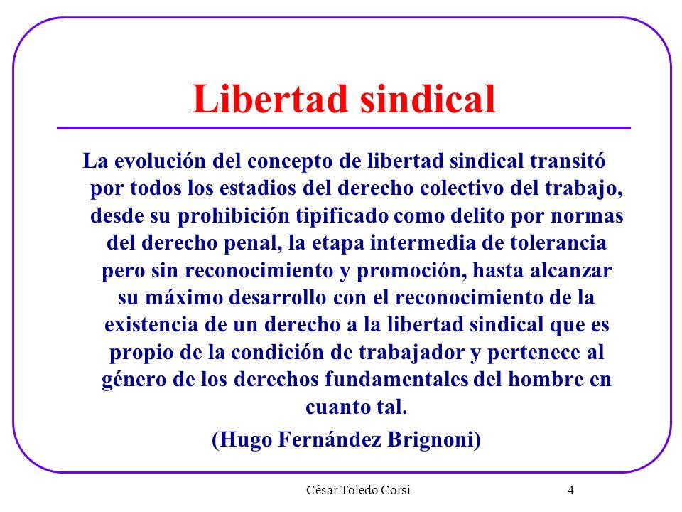 (Hugo Fernández Brignoni)