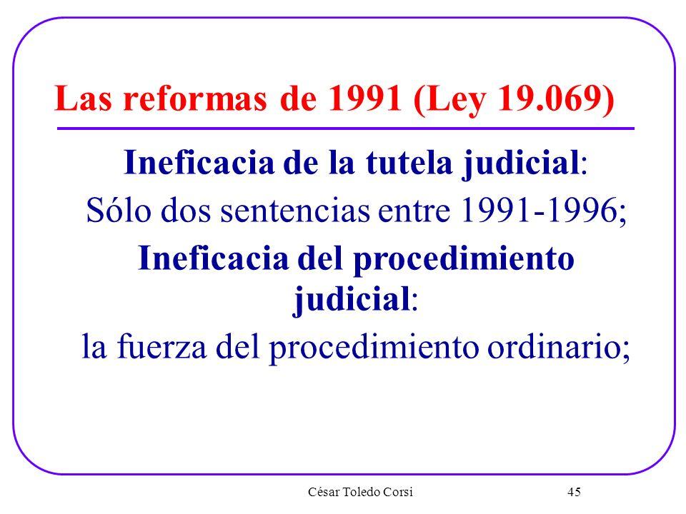 Las reformas de 1991 (Ley 19.069) Ineficacia de la tutela judicial: