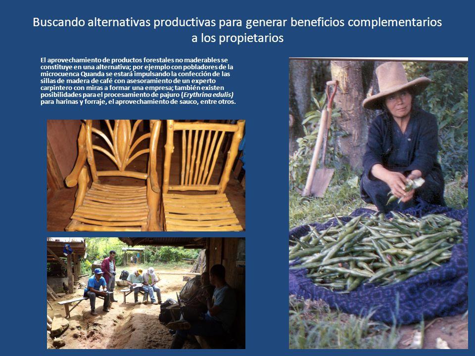 Buscando alternativas productivas para generar beneficios complementarios a los propietarios