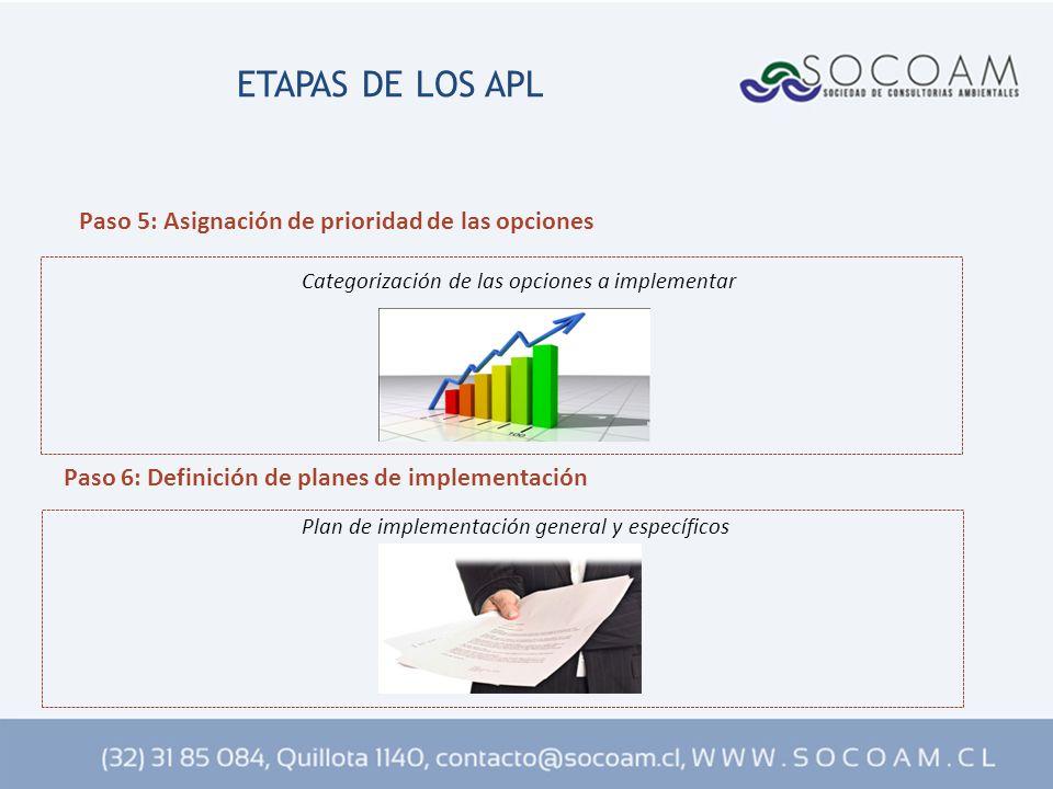 ETAPAS DE LOS APL Paso 6: Definición de planes de implementación