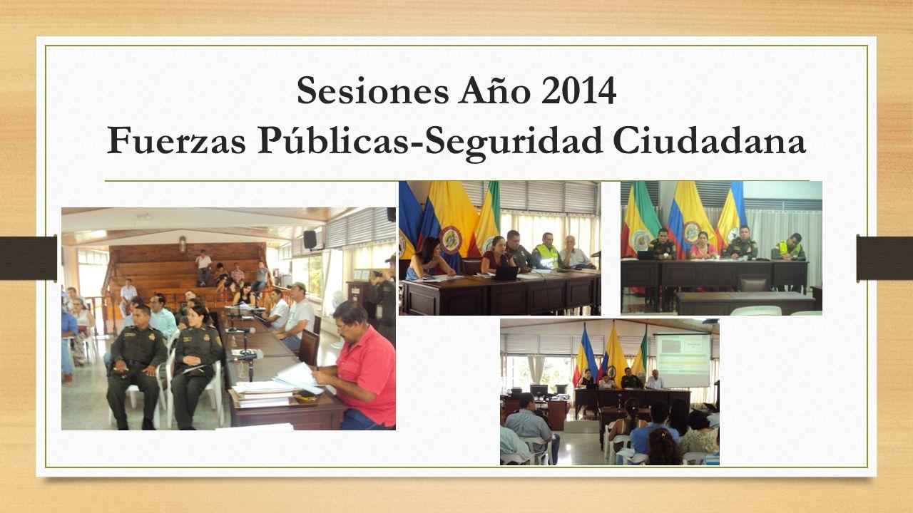 Sesiones Año 2014 Fuerzas Públicas-Seguridad Ciudadana