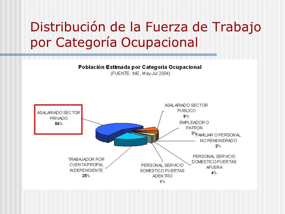 Distribución de la Fuerza de Trabajo por Categoría Ocupacional