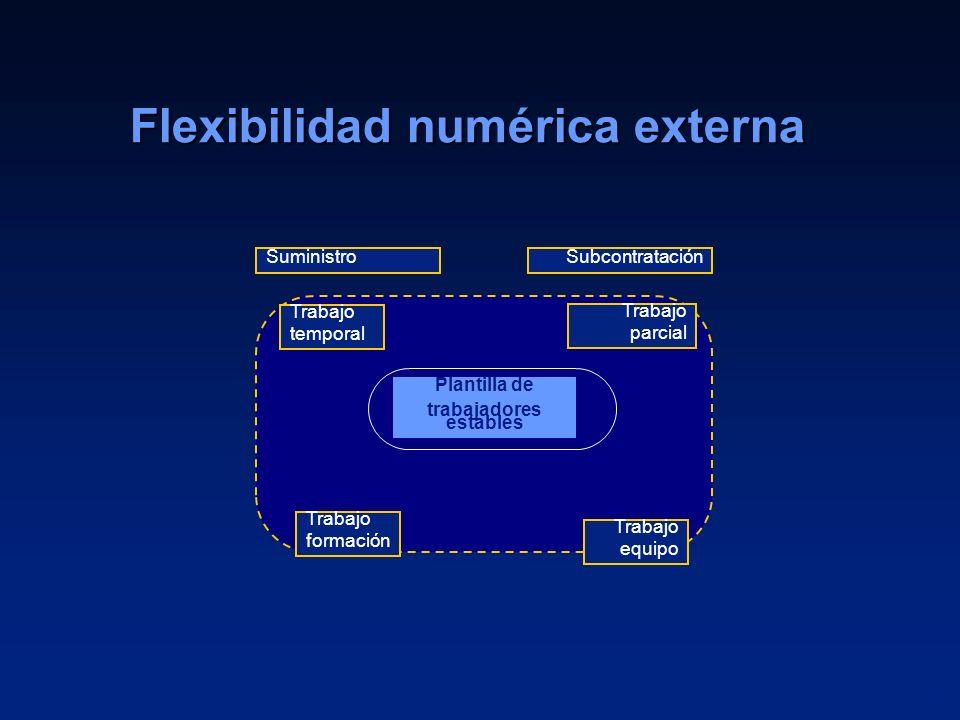 Flexibilidad numérica externa