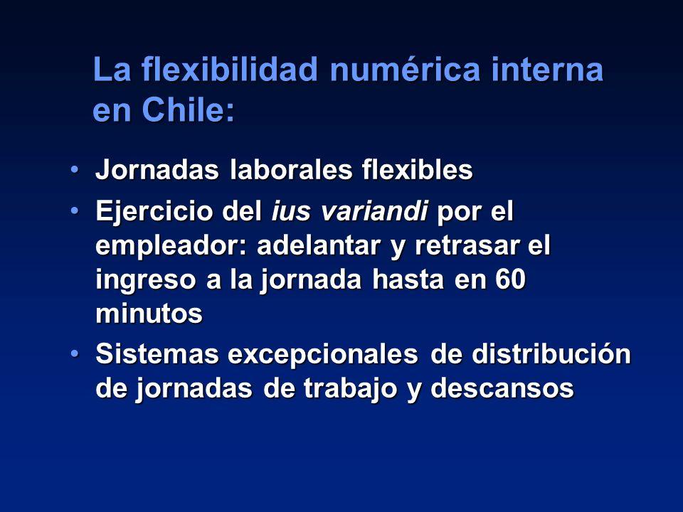 La flexibilidad numérica interna en Chile: