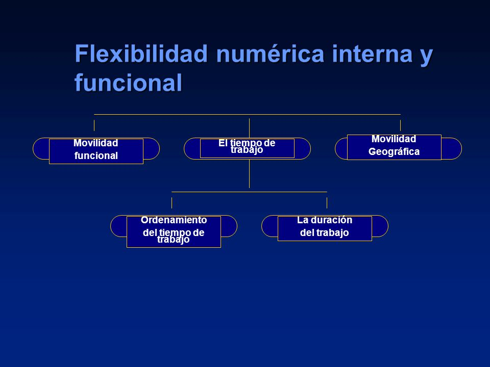 Flexibilidad numérica interna y funcional