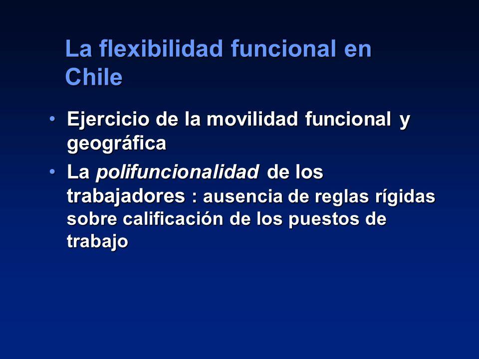 La flexibilidad funcional en Chile