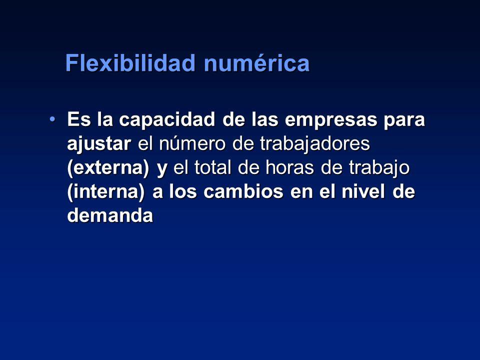 Flexibilidad numérica