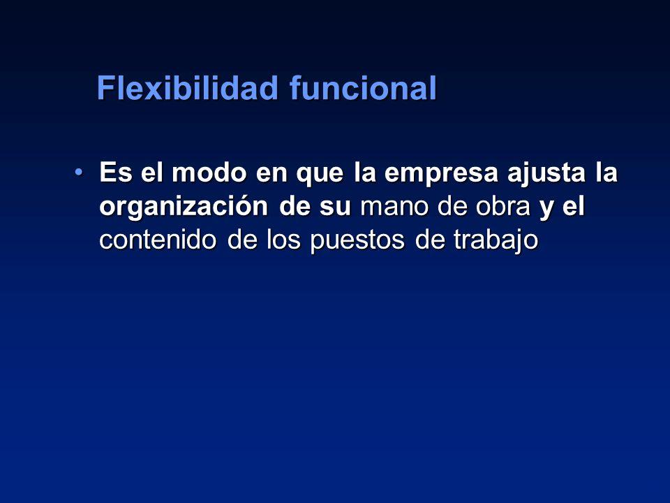 Flexibilidad funcional