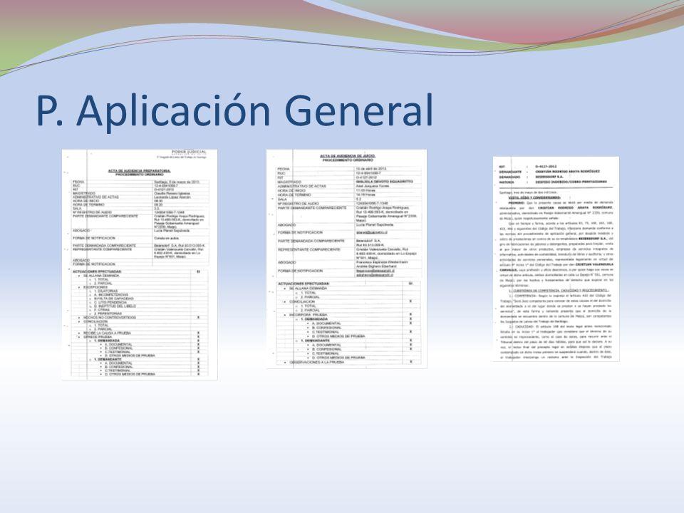 P. Aplicación General